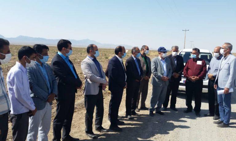 بازدید آقای مهندس اکبری معاون محترم وزارت جهاد کشاورزی و هئیت همراه از شرکت کشت و صنعت پیوند خاوران